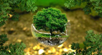 Vatios verdes consultoria energetica zaragoza